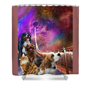 Rainbow Bridge - Cats and Dogs - Shower Curtain