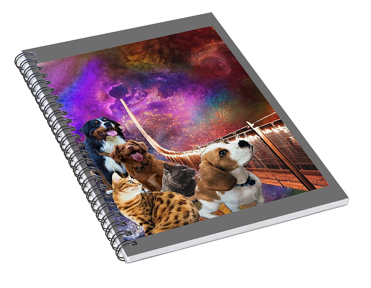 Rainbow Bridge - Cats and Dogs - Spiral Notebook