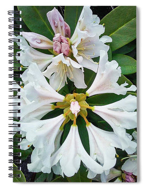 Rhododendron Flowers - Spiral Notebook
