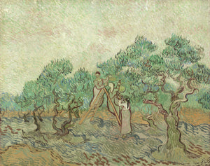 Vincent van Gogh - The Olive Orchard - Hanging Creations wall art giclée print art for sale