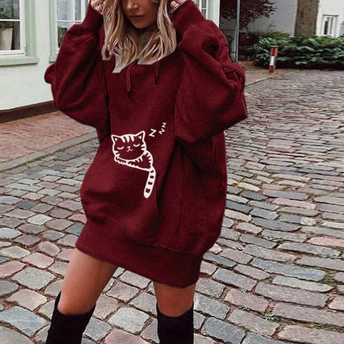 Fashion Printed Hooded And Velvet  Hoodie