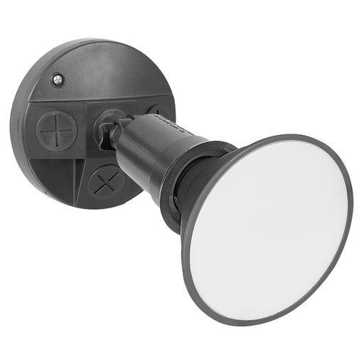 Mercator Sanders Flood Light