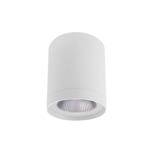 SAL COLUMN S9603 Surface Mount LED Downlight