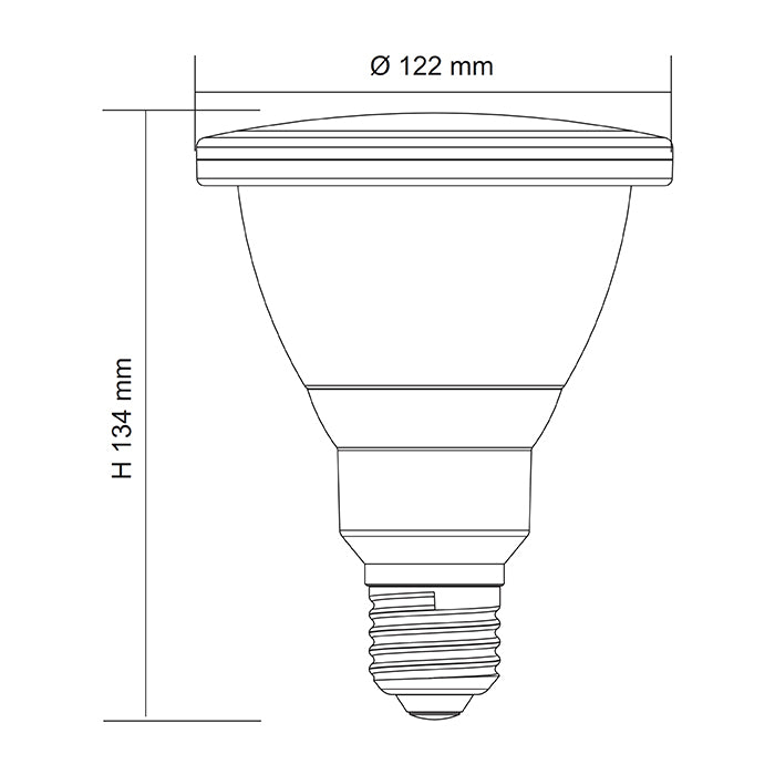 SAL LED PAR38 LAMP IP65 LPAR38