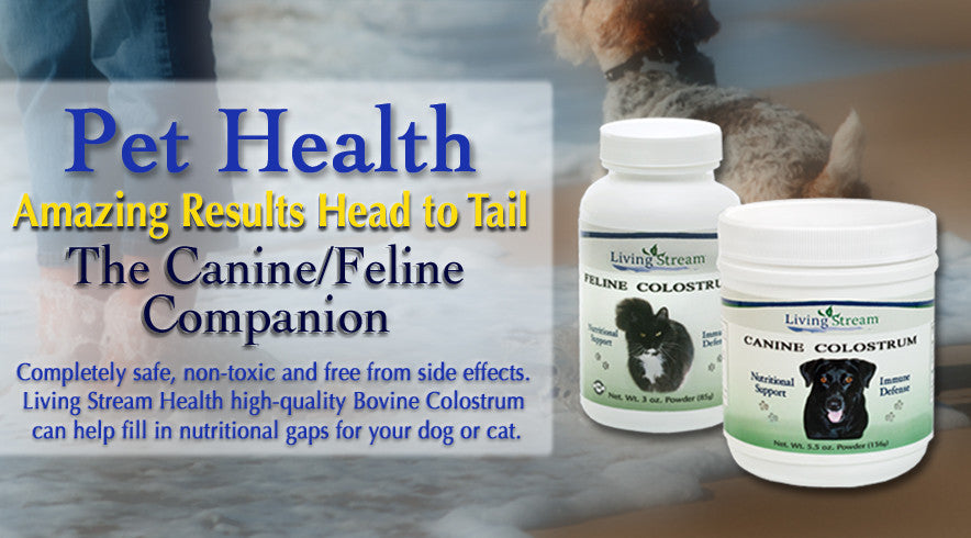 dog and cat colostrum