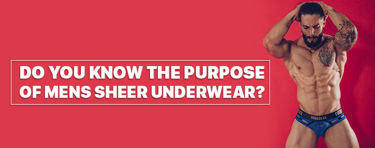 Do you know the purpose of mens sheer underwear ?