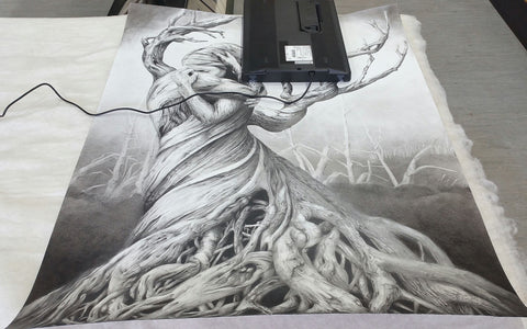 Scanning One Tree drawing
