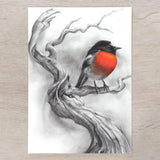 'Scarlet Robin' A5 art card