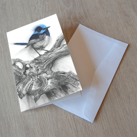 'Fairy Wren' greeting card