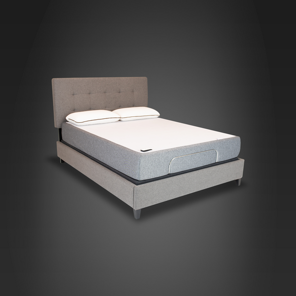 Anti Oxidant Bed®