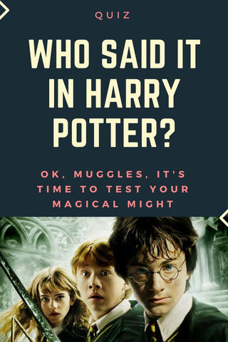 Who said it? Harry potter quiz! zoo quizzes