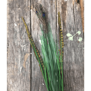 "29.25"" Onion Grass Bush Spray with Peacock Feather"
