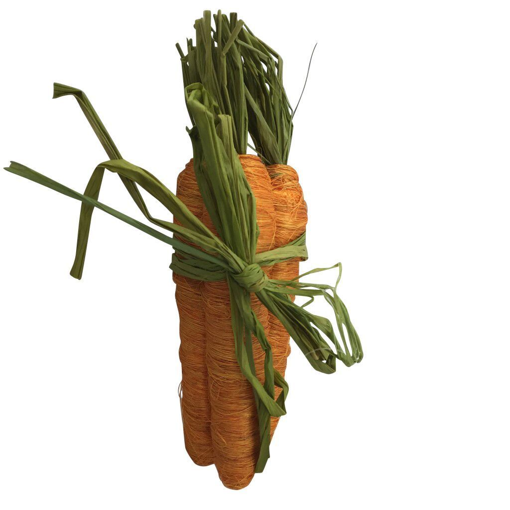 3 Piece Orange Carrot Bundle