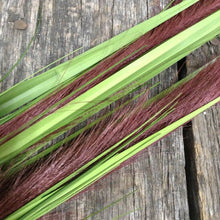 "32"" Onion Grass Spray 2 Colors"