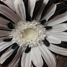 "40"" Jumbo Gerber Daisy Bloom - Six Colors"