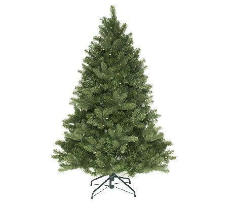 5' Colorado Spruce w/ Multi & Clear Lights