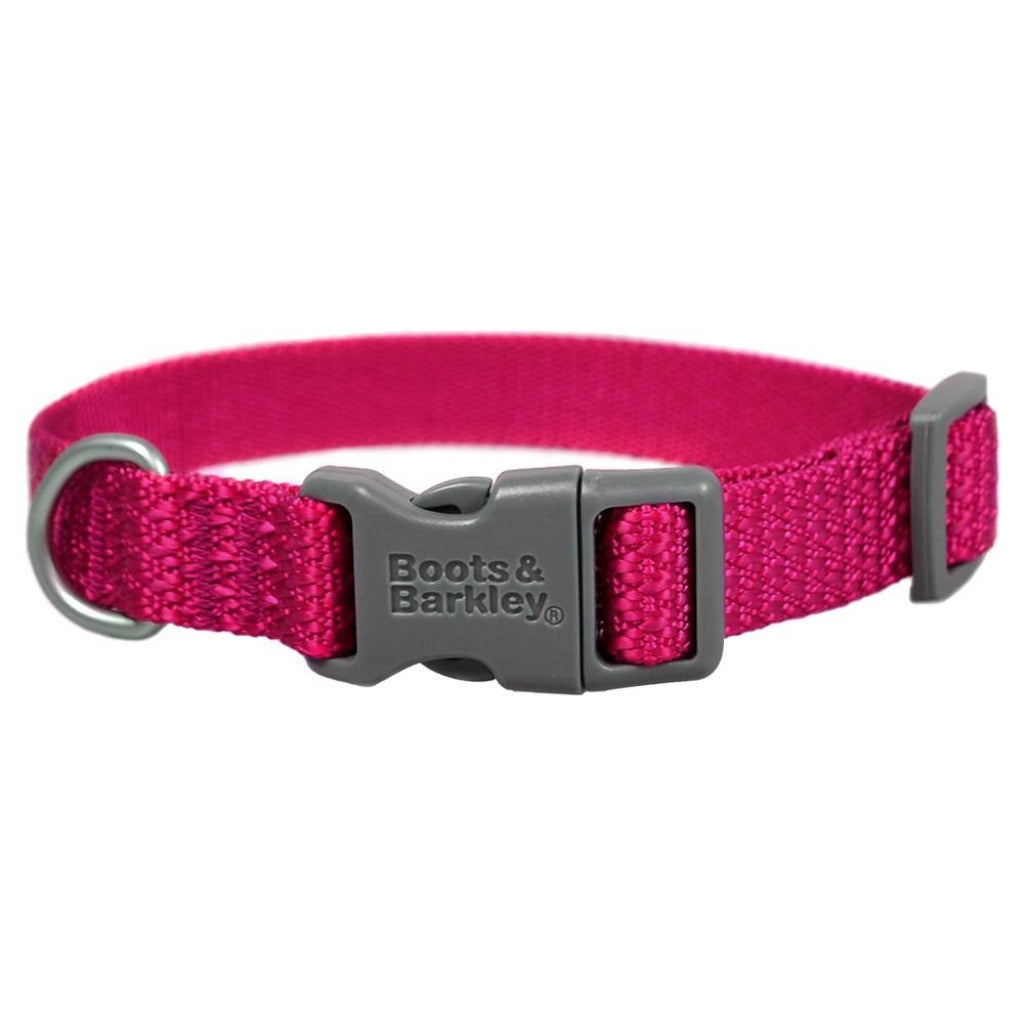 Comfort Dog Collar by Boots and Barkley