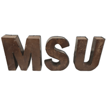 "MSU 8"" Letters"