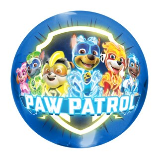 Paw Patrol Small Light Up Ball
