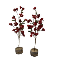 Two Foot Classic Green Tree Set Of 2 Pieces
