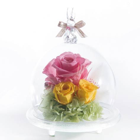 Rabbit Glass Dome