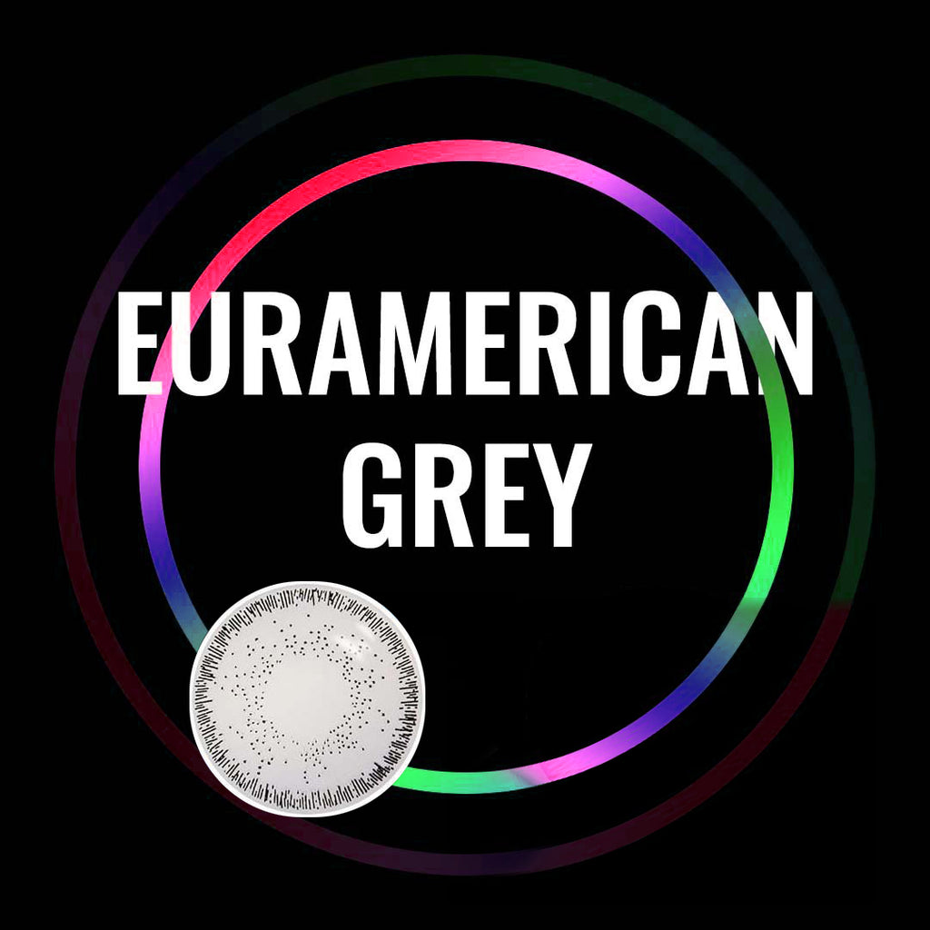Eye Circle Lens Euramerican Grey prescription colored contact lenses-Eyemi
