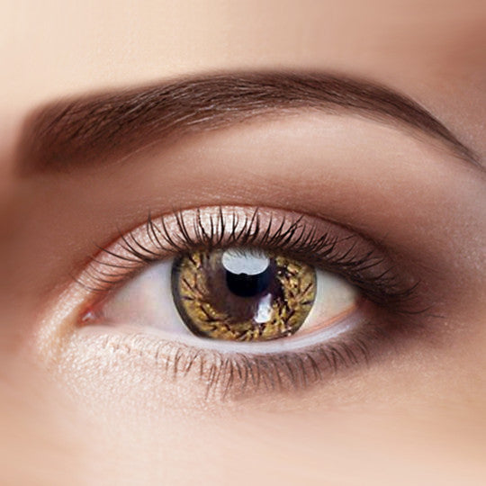 Eye Circle Lens Gold Angel Wing prescription colored contact lenses-Eyemi
