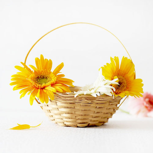 DaisyLife natural bamboo small round flower basket with handle