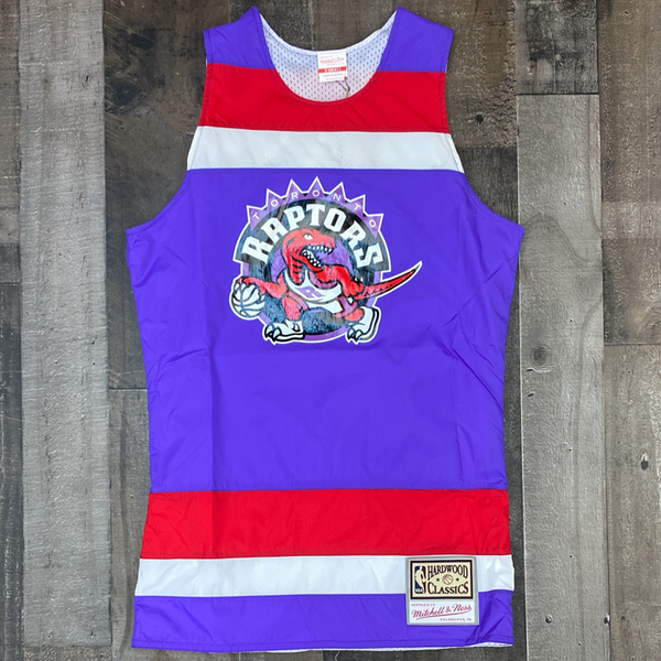 Mitchell & Ness-nba striped jersey Toronto Raptors