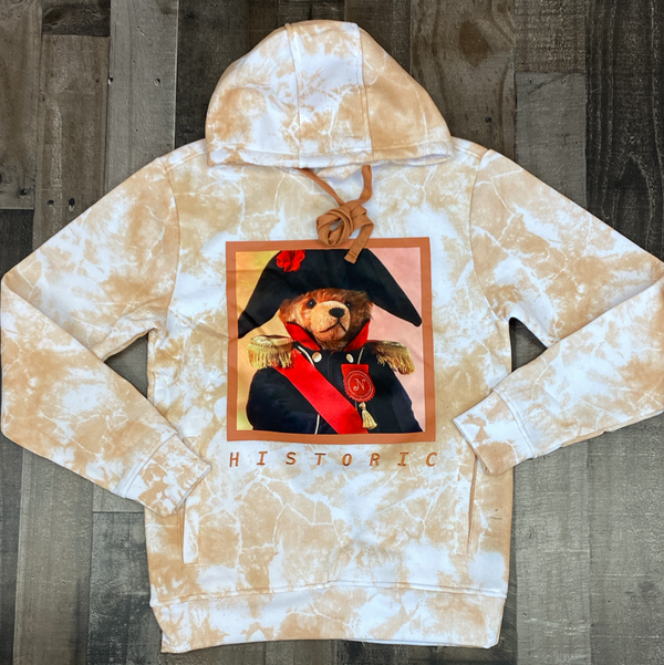 Rebel minds- historic teddy hoodie