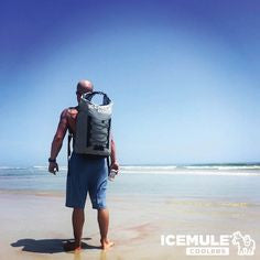 IceMule Pro Man On Beach
