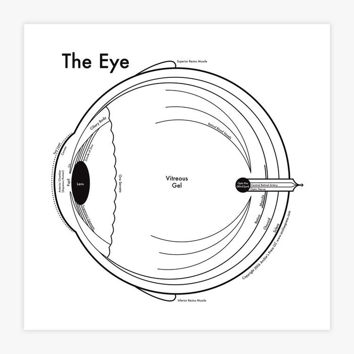 The Eye letterpress print