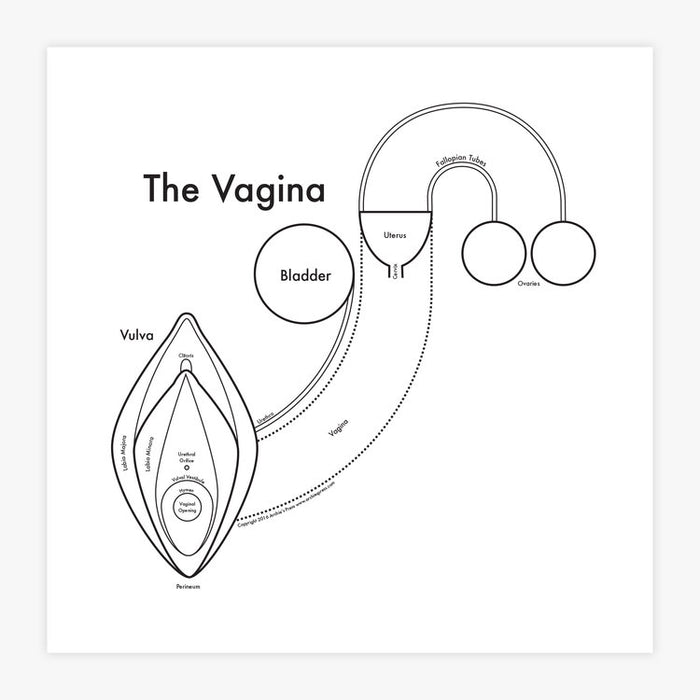 The vagina letterpress art print