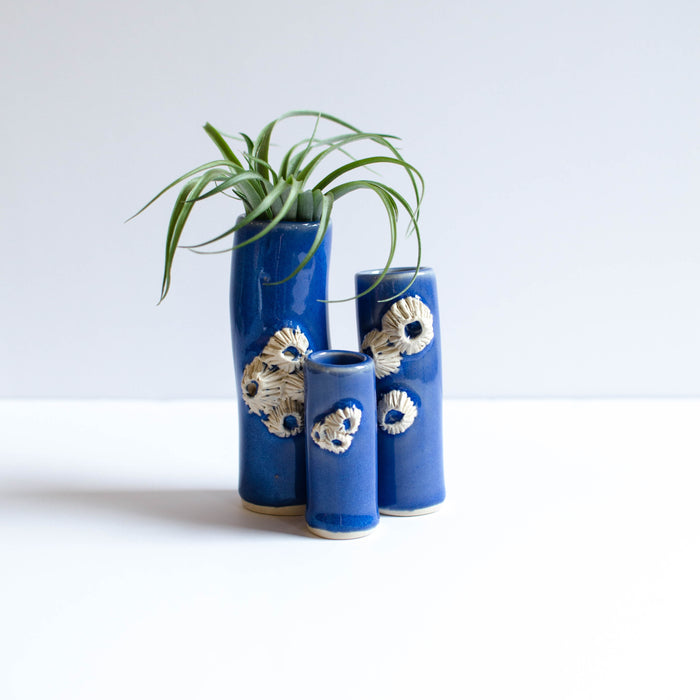 Barnacle Vases | Blue
