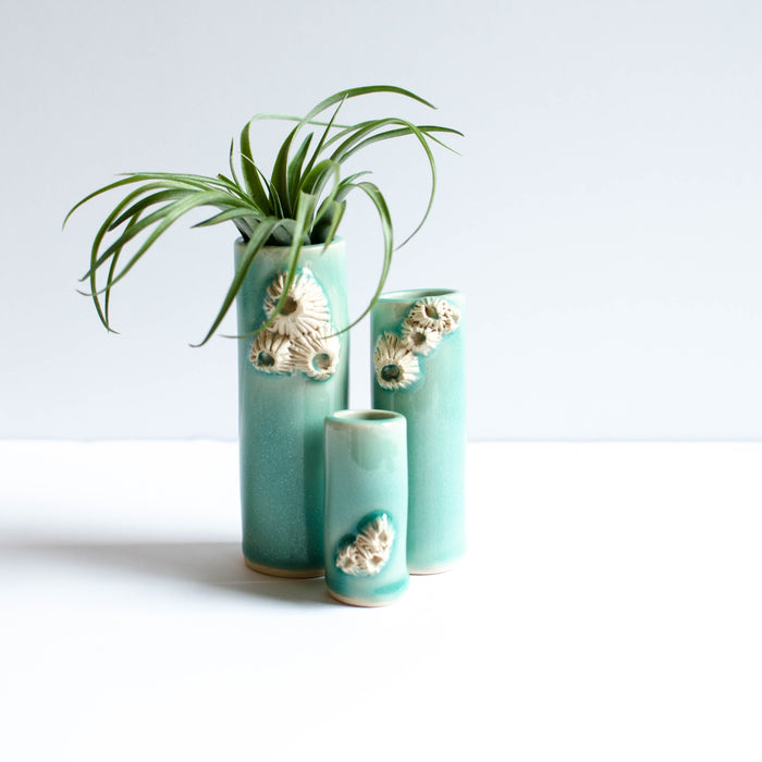 Barnacle Vases | Turquoise