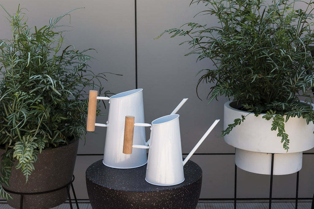 The White Watering Can