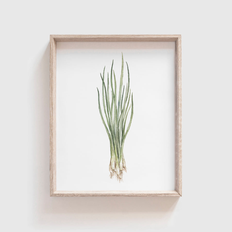 Green Onion Art Print