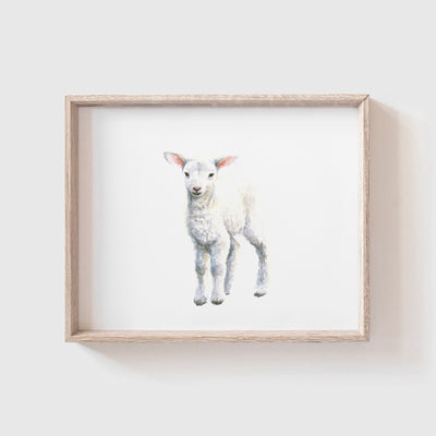 Lamb No. 2 Art Print