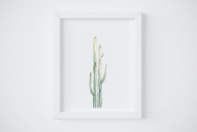 Spikey Cactus No. 3 Art Print
