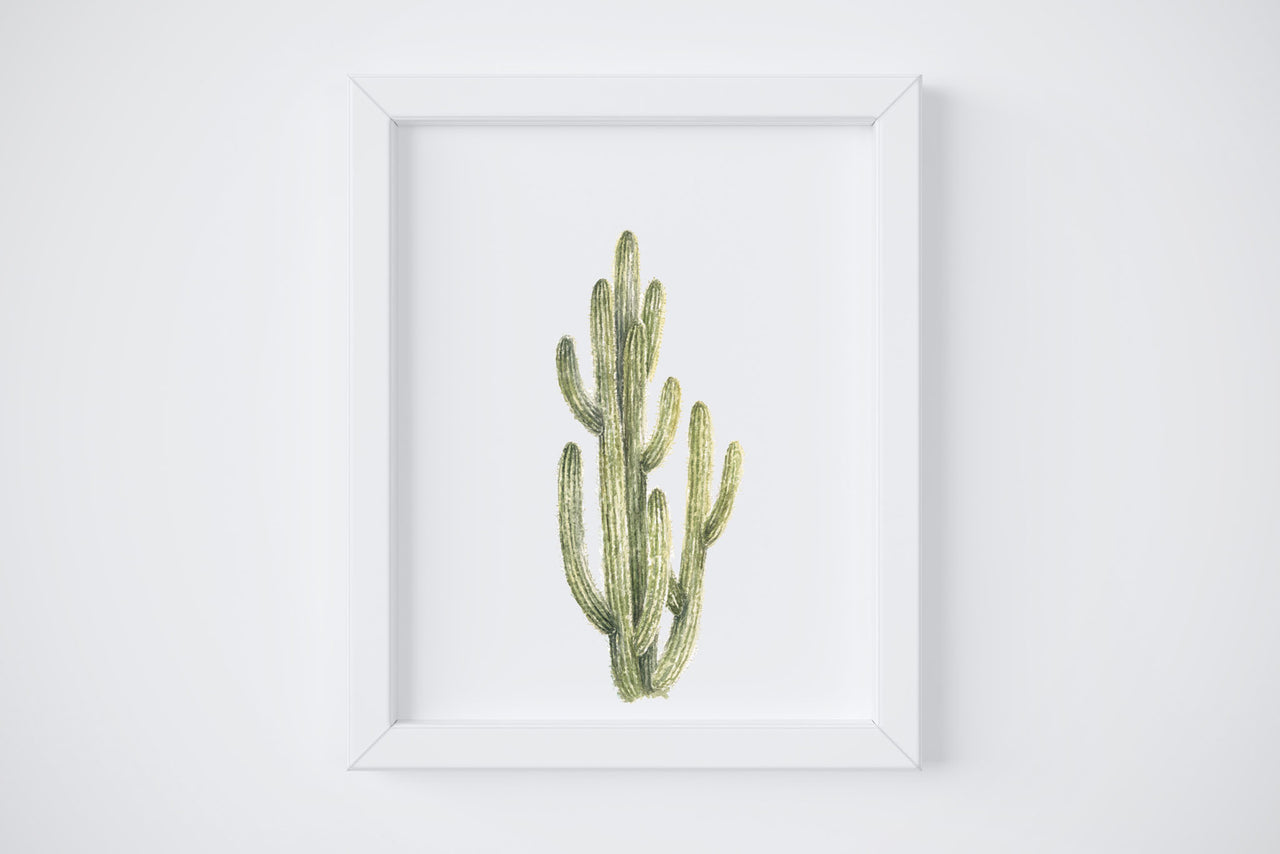 Spikey Cactus No. 4 Art Print