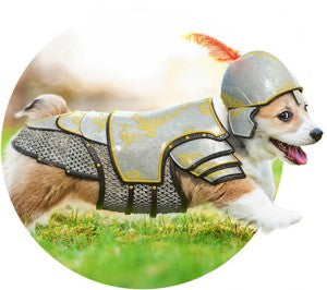 corgi-warrior