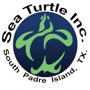 Sea Turtle, Inc.