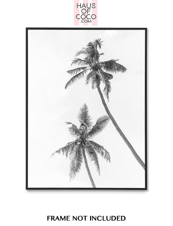 2 PALM TREES (BW)