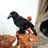Oulii Halloween Black Crow Artificial Bird Raven Prop Art And Crafts For Halloween Party Decoration