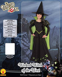 Wizard Of Oz Wicked Witch Of The West Costume, Small One Color