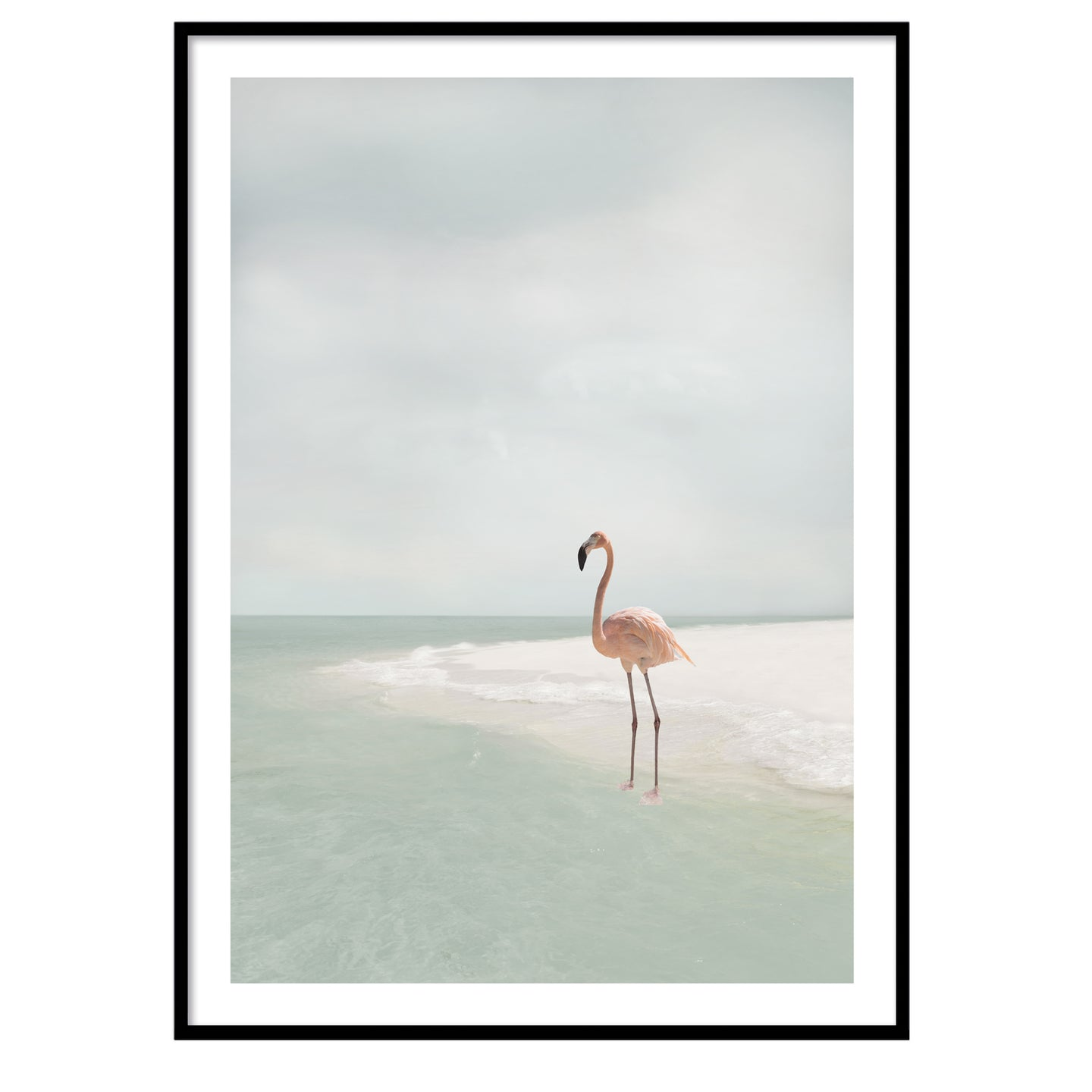 Flamingo beach poster