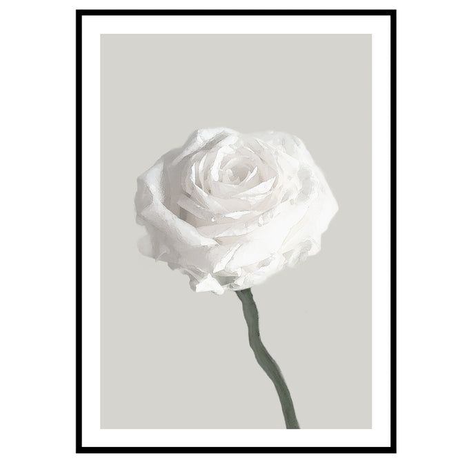 Romantic rose poster