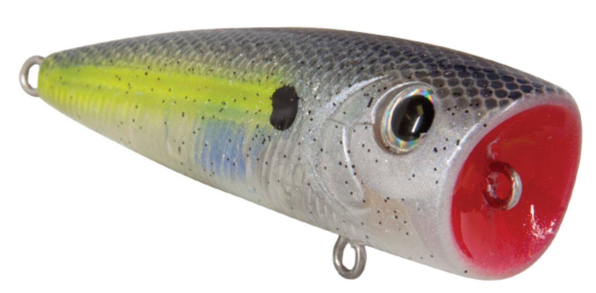 Livingston Lures Tournament Series Walk N Pop 67 - Direct Fishing Sales