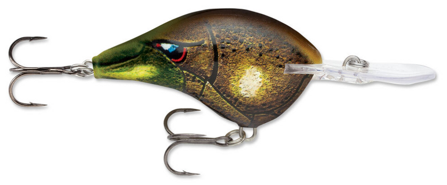 Rapala DT Series DT-10 Crankbait - Direct Fishing Sales