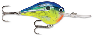 Rapala DT Series DT-16 Crankbait - Direct Fishing Sales